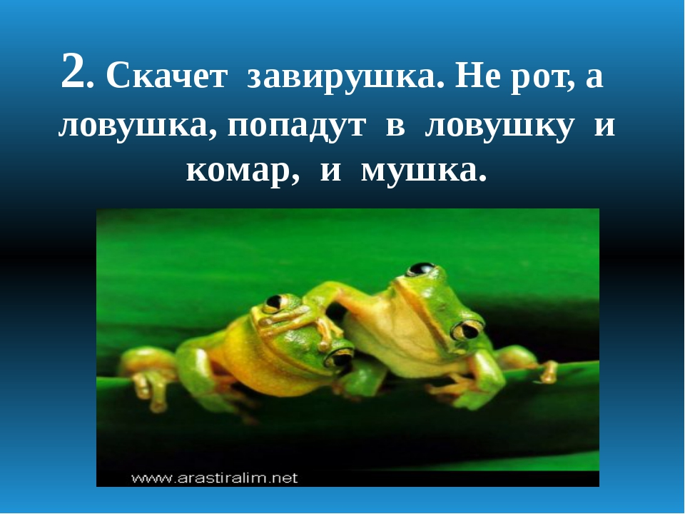 2. Скачет завирушка. Не рот, а ловушка, попадут в ловушку и комар, и мушка.