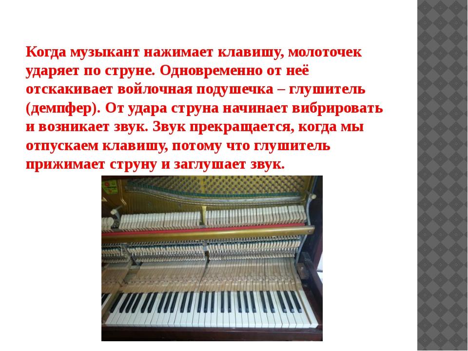 Когда музыкант нажимает клавишу, молоточек ударяет по струне. Одновременно от...