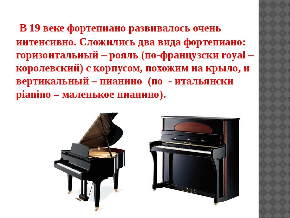 В 19 веке фортепиано развивалось очень интенсивно. Сложились два вида фортеп...