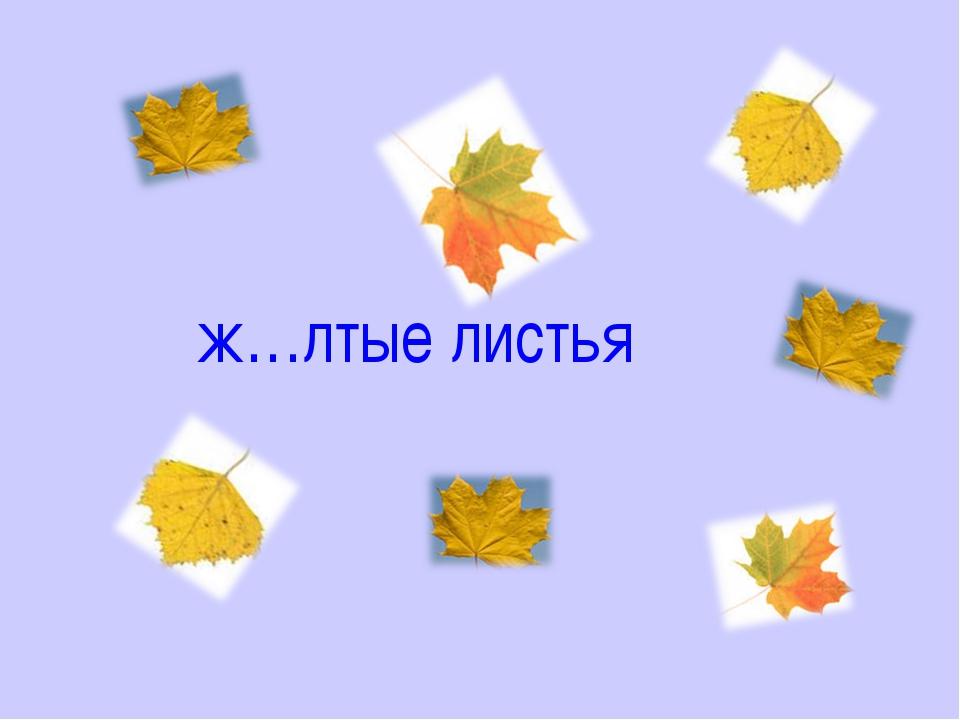 ж…лтые листья
