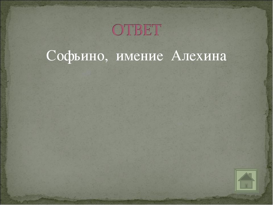 Софьино, имение Алехина