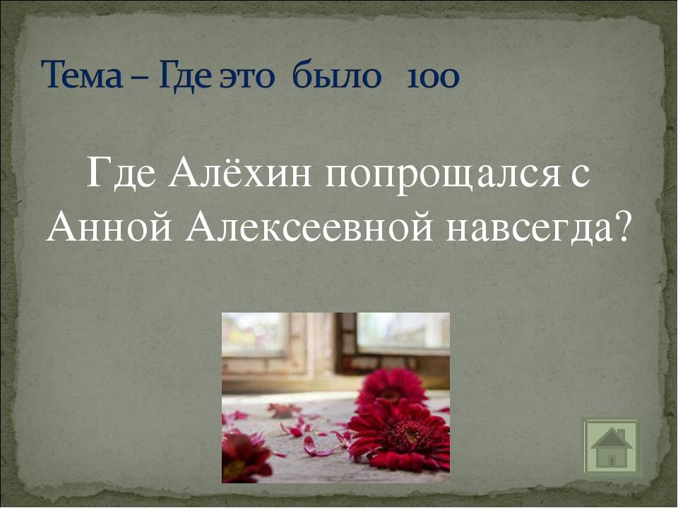 Где Алёхин попрощался с Анной Алексеевной навсегда?