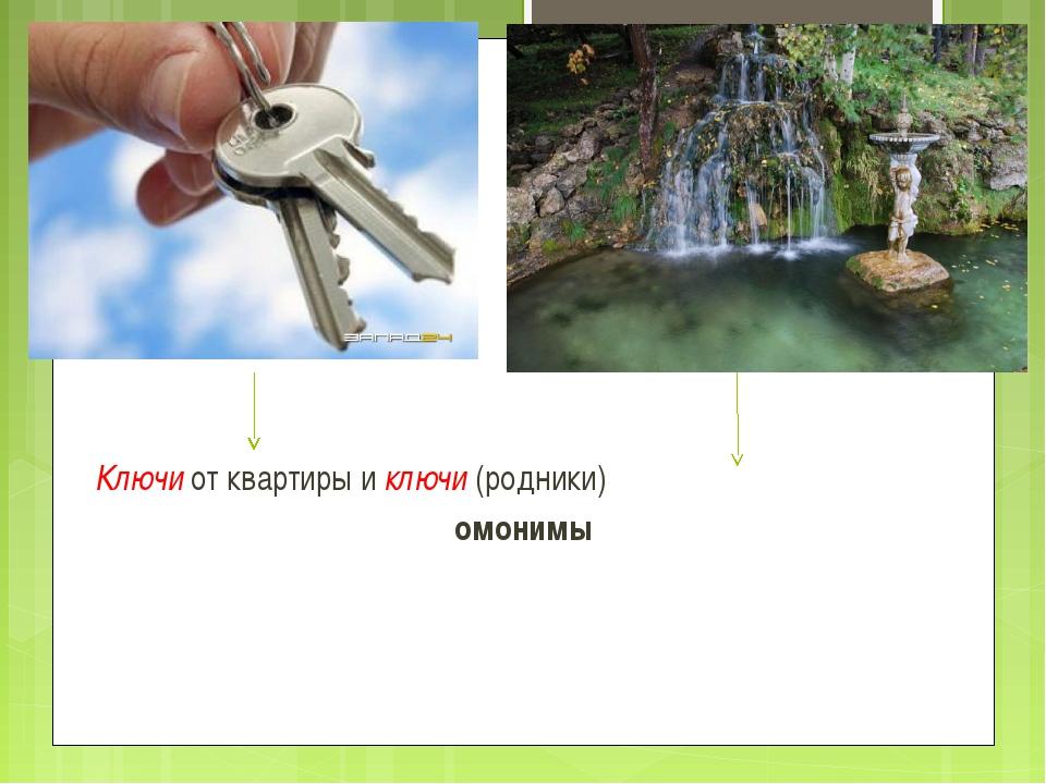 Ключи от квартиры и ключи (родники) омонимы