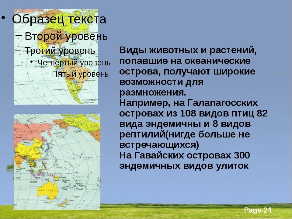 Виды животных и растений, попавшие на океанические острова, получают широкие...