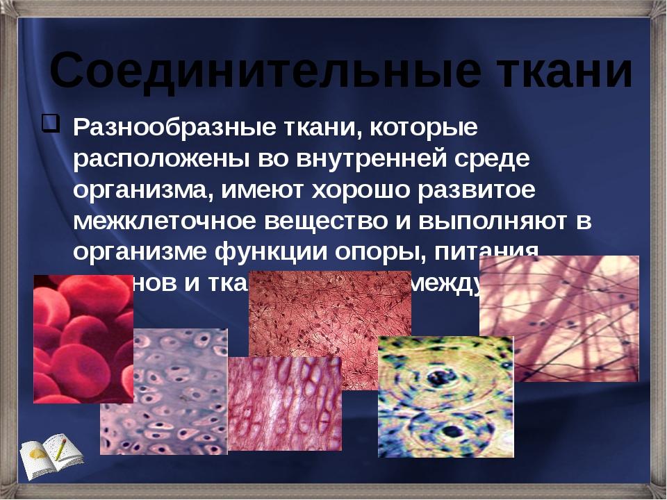 Разнообразные ткани, которые расположены во внутренней среде организма, имеют...