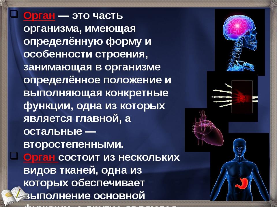 Орган — это часть организма, имеющая определённую форму и особенности строени...