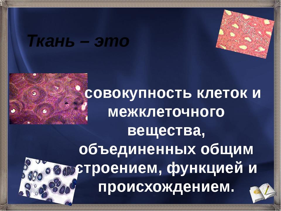 Ткань – это совокупность клеток и межклеточного вещества, объединенных общим...