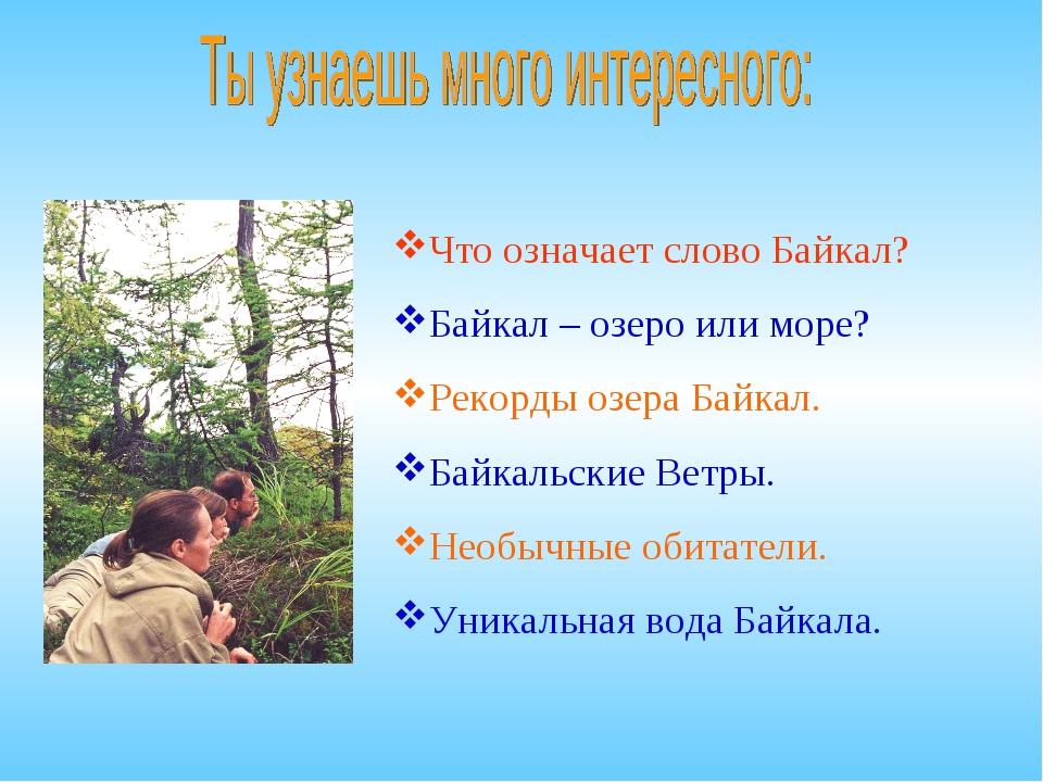 Что означает слово Байкал? Байкал – озеро или море? Рекорды озера Байкал. Бай...