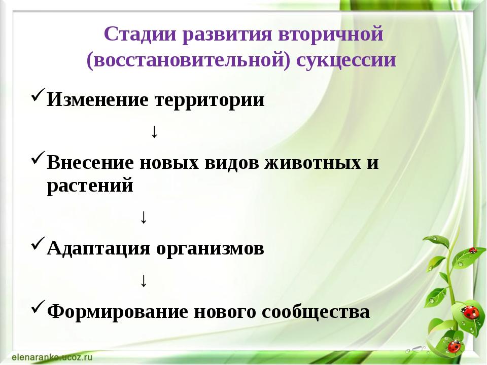 Стадии развития вторичной (восстановительной) сукцессии Изменение территории...