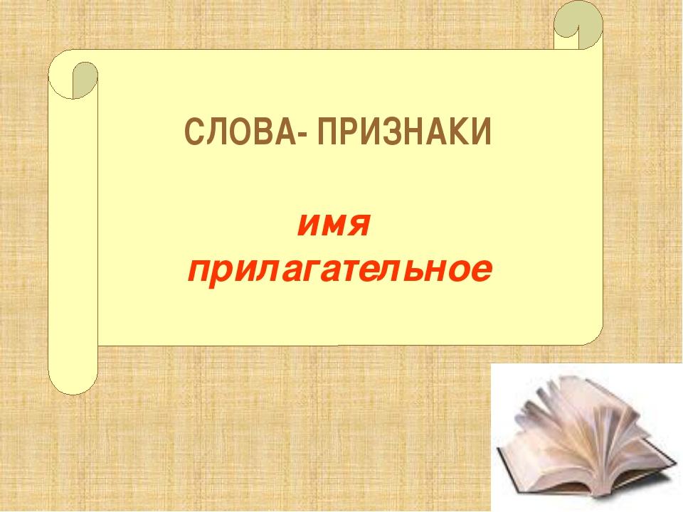 СЛОВА- ПРИЗНАКИ имя прилагательное