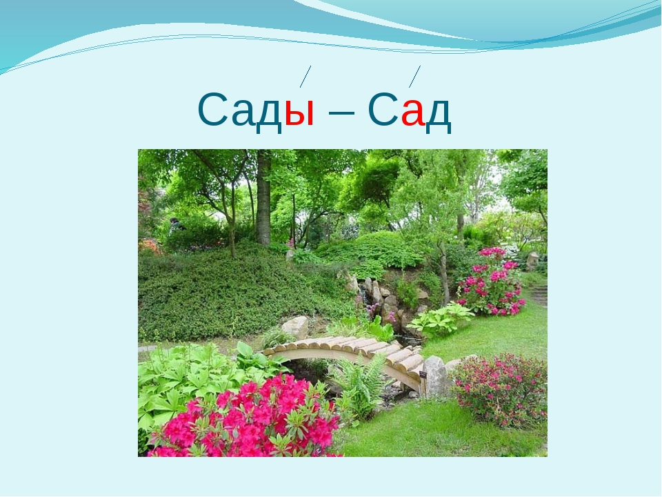 Сады – Сад