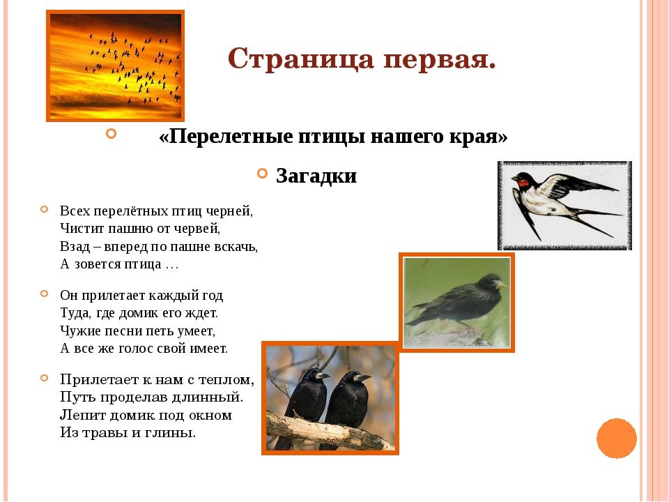 Страница первая. «Перелетные птицы нашего края» Загадки Всех перелётных птиц...