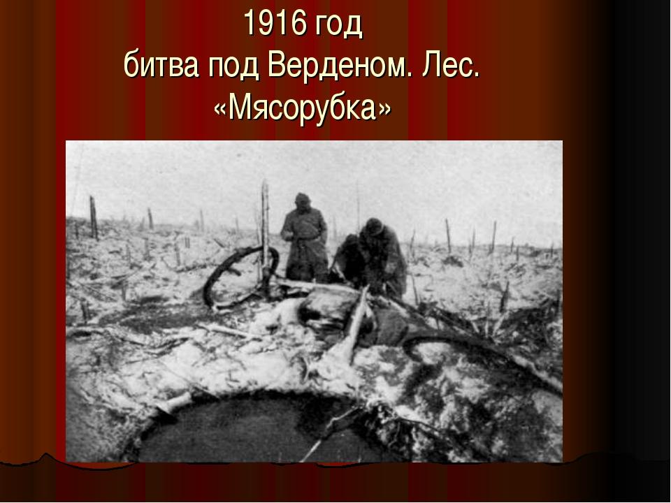 1916 год битва под Верденом. Лес. «Мясорубка»