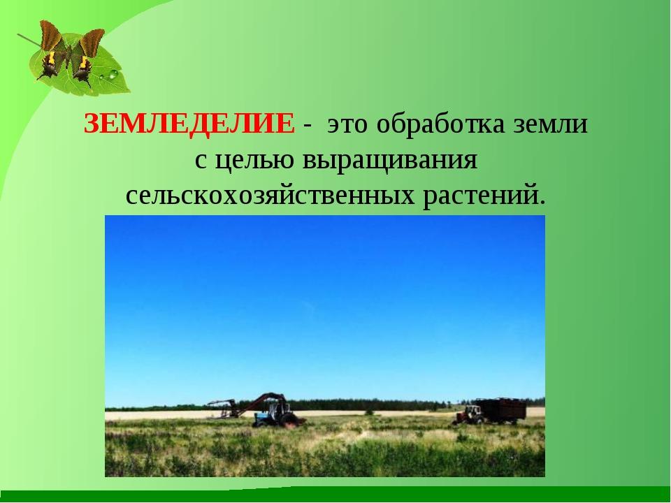 ЗЕМЛЕДЕЛИЕ - это обработка земли с целью выращивания сельскохозяйственных рас...
