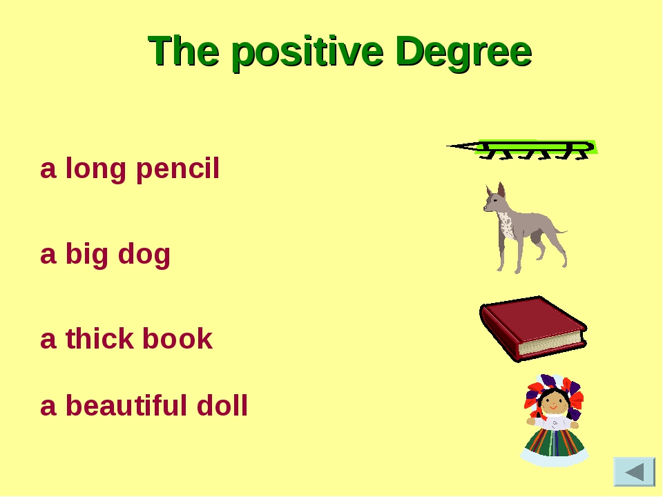 The positive Degree a long pencil a big dog a thick book a beautiful doll