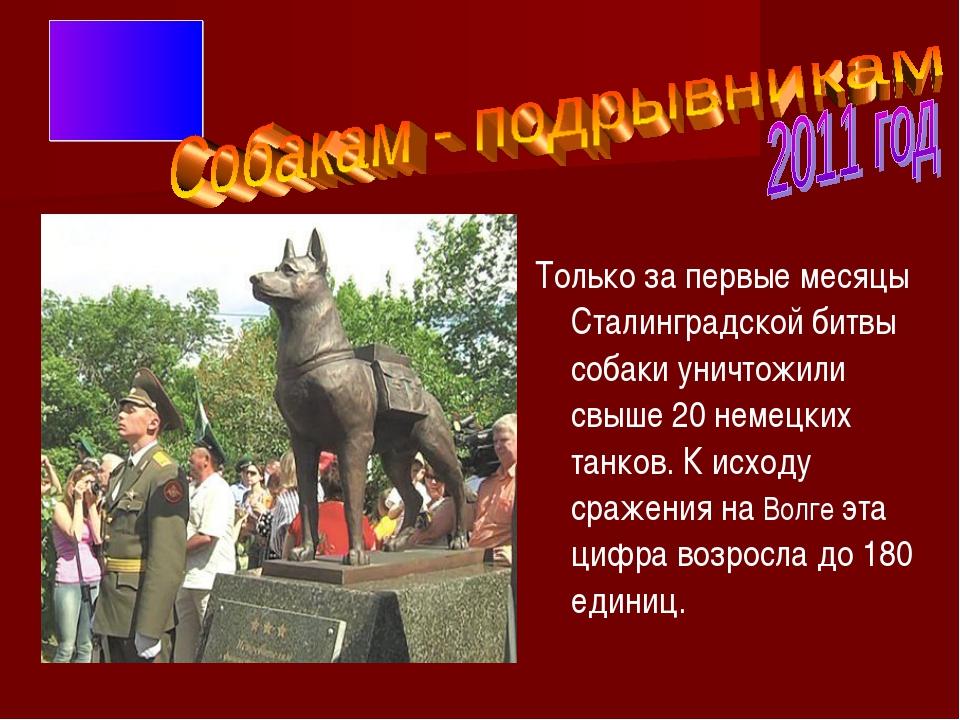 Только за первые месяцы Сталинградской битвы собаки уничтожили свыше 20 неме...