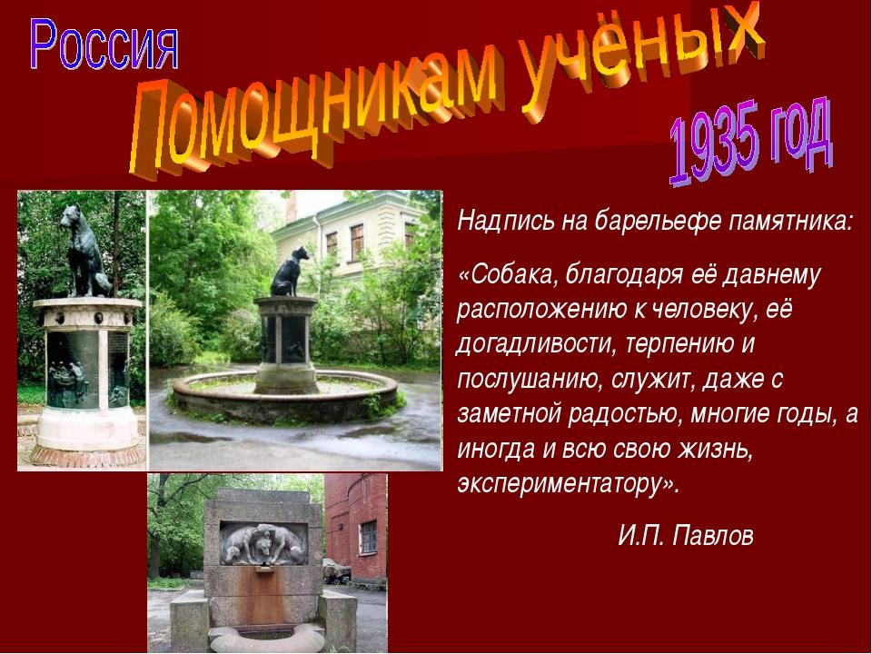 Надпись на барельефе памятника: «Собака, благодаря её давнему расположению к...