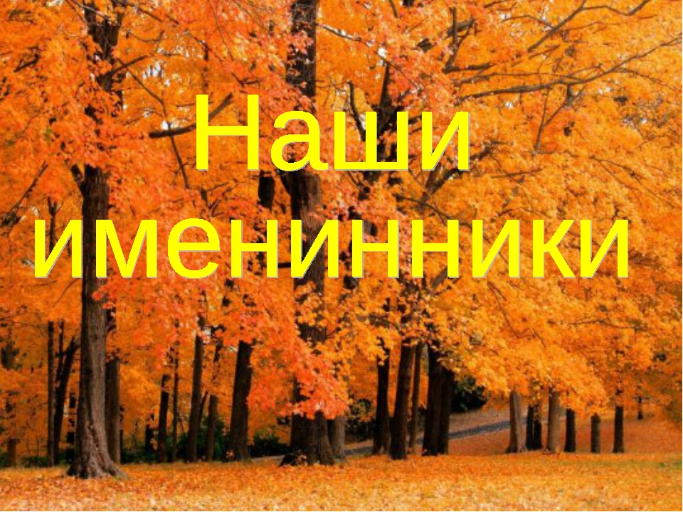 @Bukatina M. A.