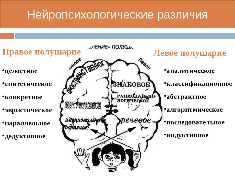 Нейропсихологические различия целостное синтетическое конкретное эвристическо...