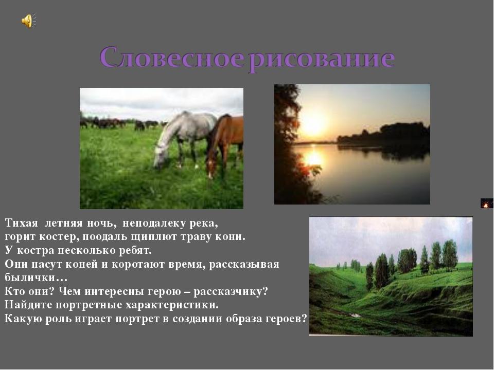 Тихая летняя ночь, неподалеку река, горит костер, поодаль щиплют траву кони....