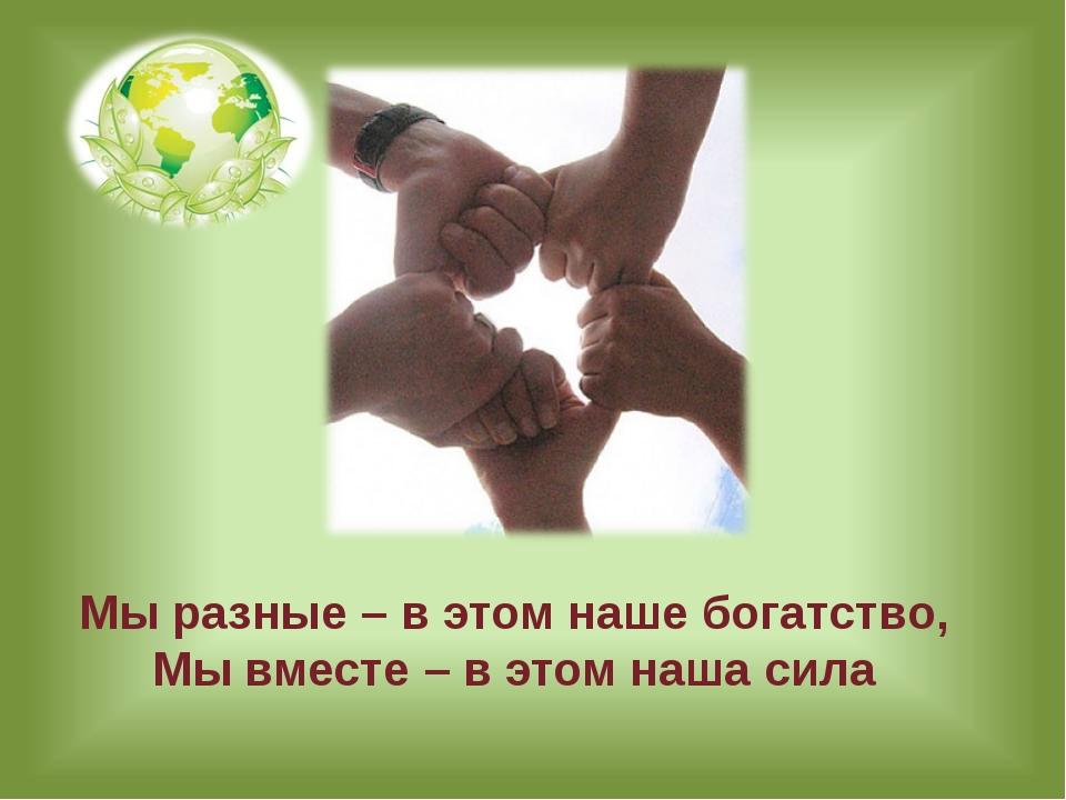 Гундарева О. Н. Мы разные – в этом наше богатство, Мы вместе – в этом наша сила