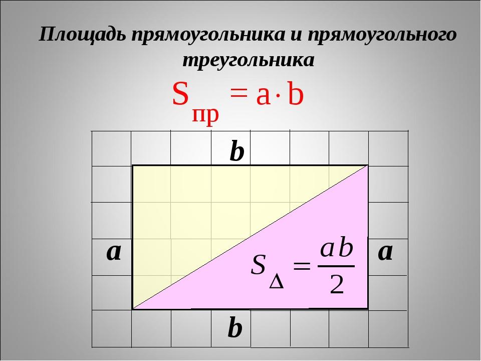 Площадь прямоугольника и прямоугольного треугольника