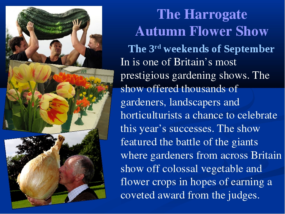 The Harrogate Autumn Flower Show The 3rd weekends of September In is one of B...