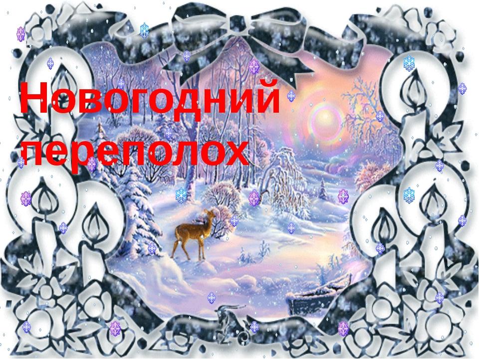 Новогодний переполох -2013