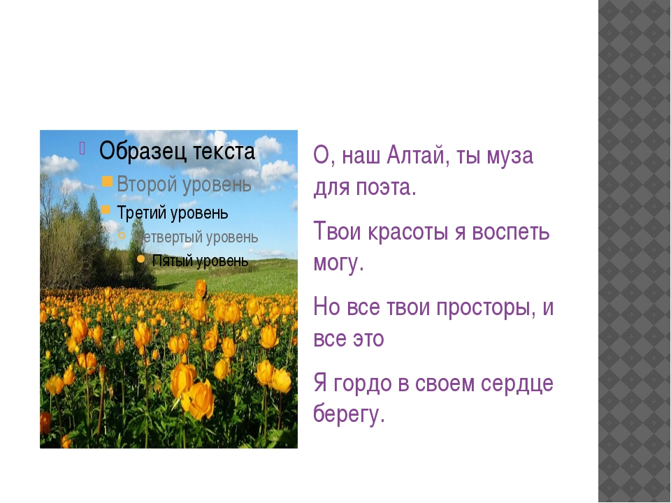 О, наш Алтай, ты муза для поэта. Твои красоты я воспеть могу. Но все твои пр...