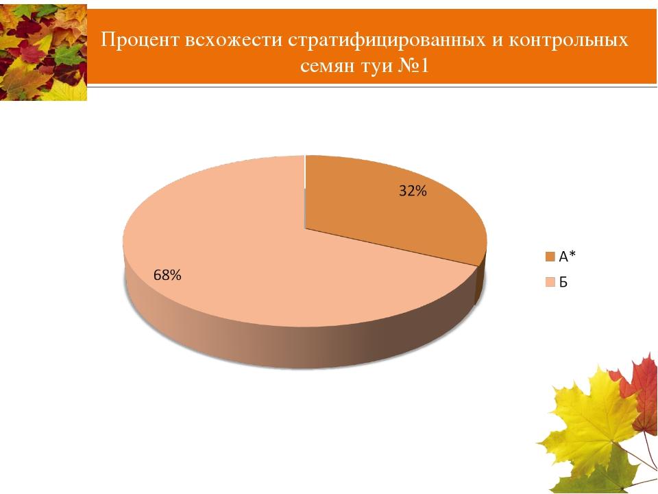 Процент всхожести стратифицированных и контрольных семян туи №1