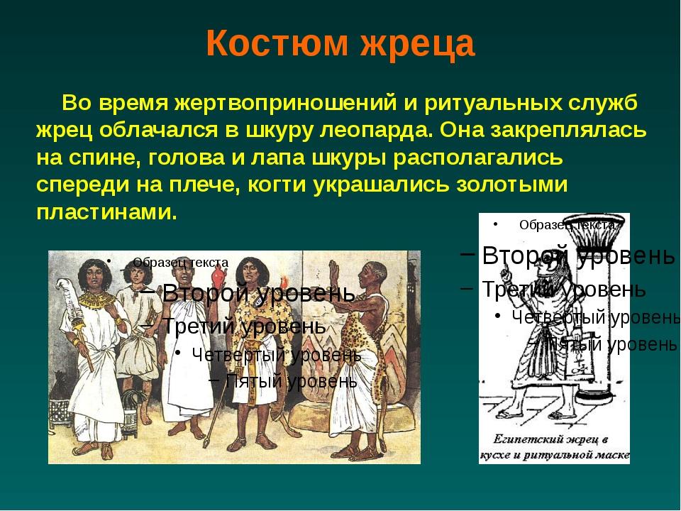 Костюм жреца Во время жертвоприношений и ритуальных служб жрец облачался в шк...