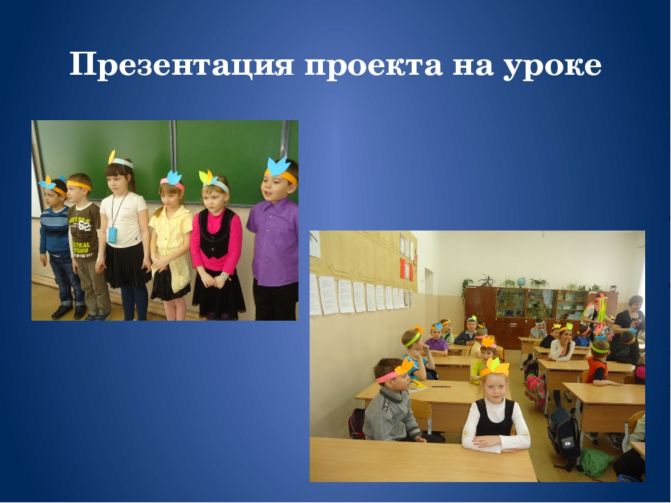 Презентация проекта на уроке