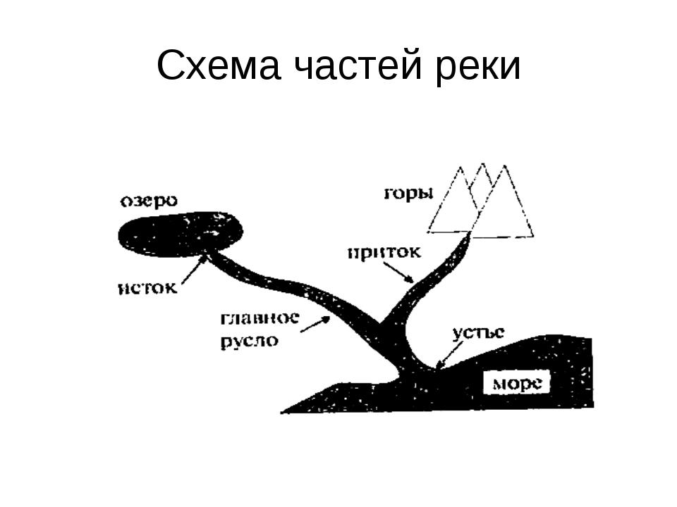 Схема частей реки