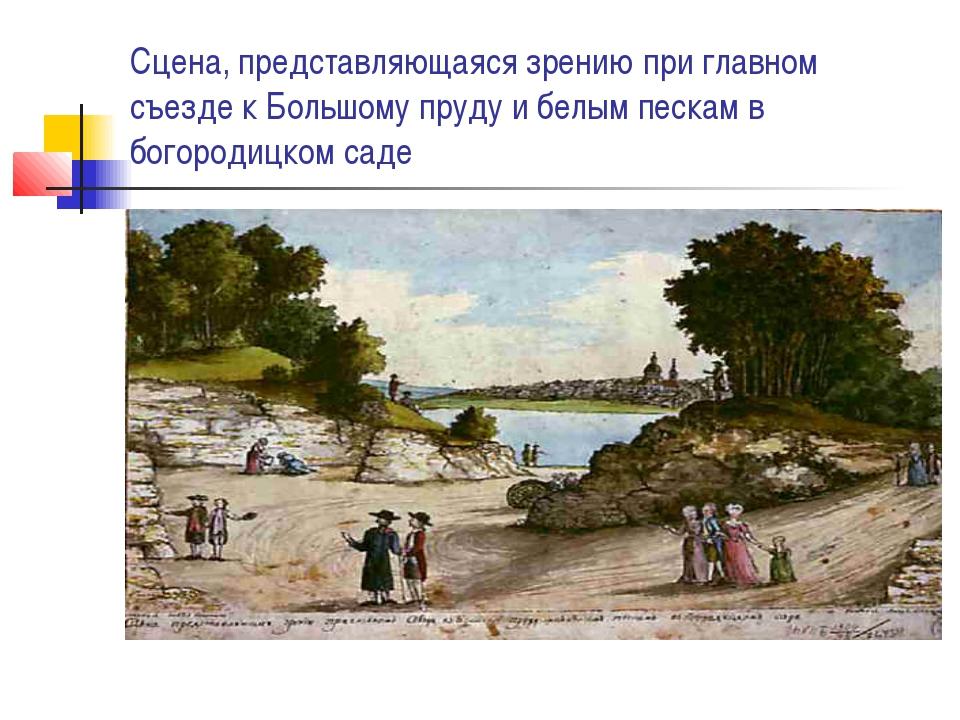 Сцена, представляющаяся зрению при главном съезде к Большому пруду и белым пе...