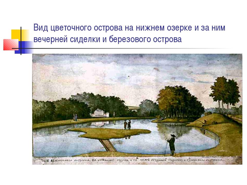 Вид цветочного острова на нижнем озерке и за ним вечерней сиделки и березовог...