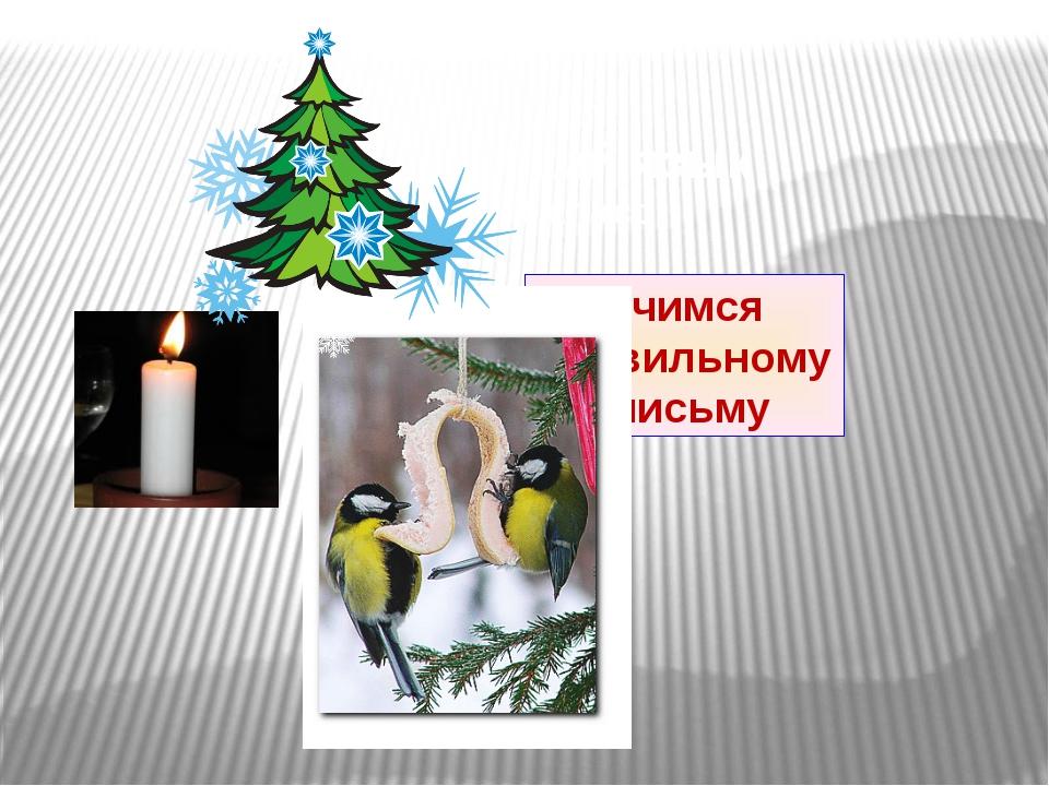 Русский язык 1 класс Учимся правильному письму