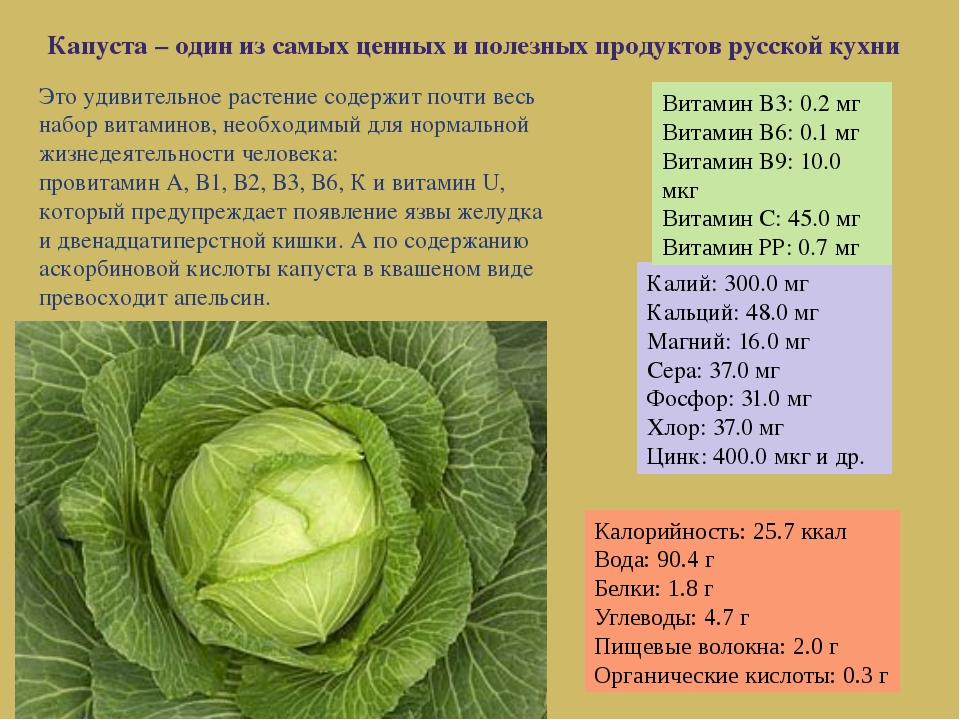 Это удивительное растение содержит почти весь набор витаминов, необходимый дл...