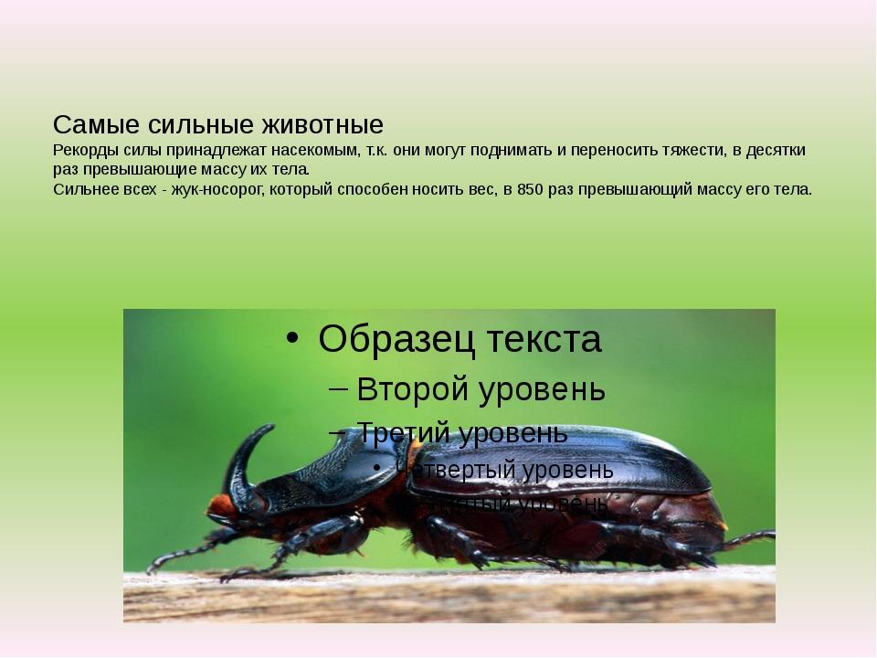 Самые сильные животные Рекорды силы принадлежат насекомым, т.к. они могут по...