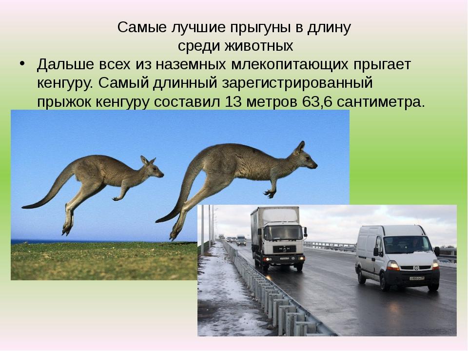 Самые лучшие прыгуны в длину среди животных Дальше всех из наземных млекопита...