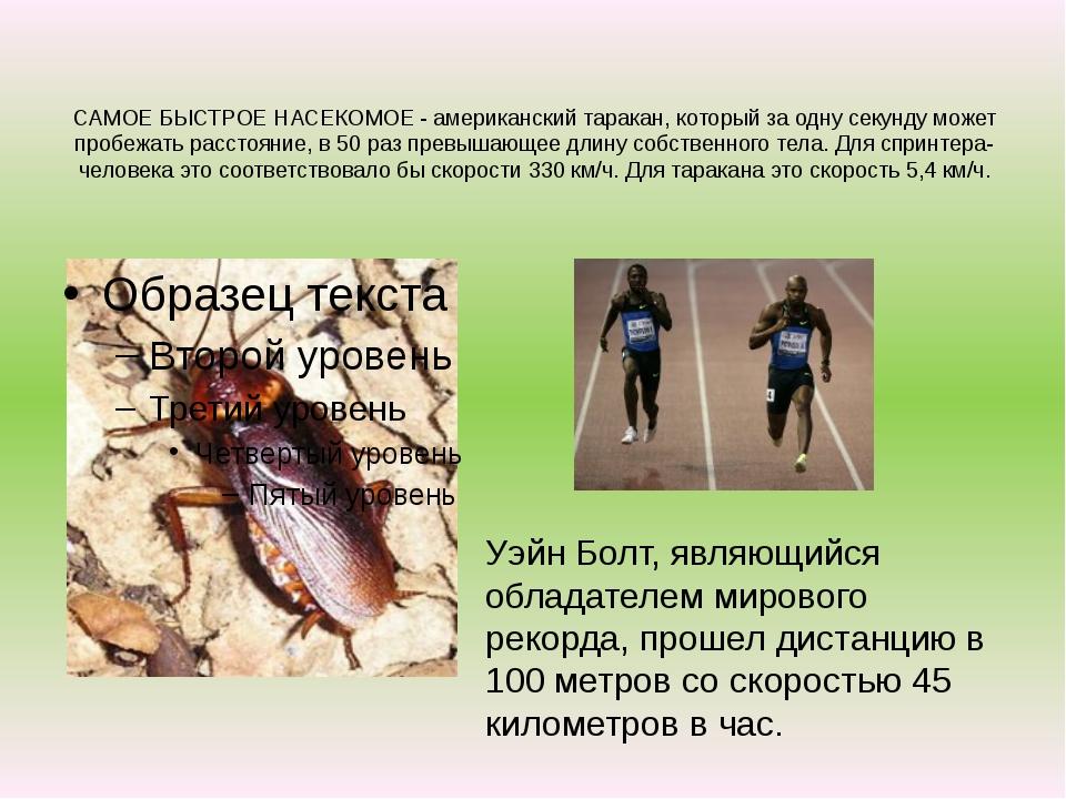 САМОЕ БЫСТРОЕ НАСЕКОМОЕ - американский таракан, который за одну секунду может...