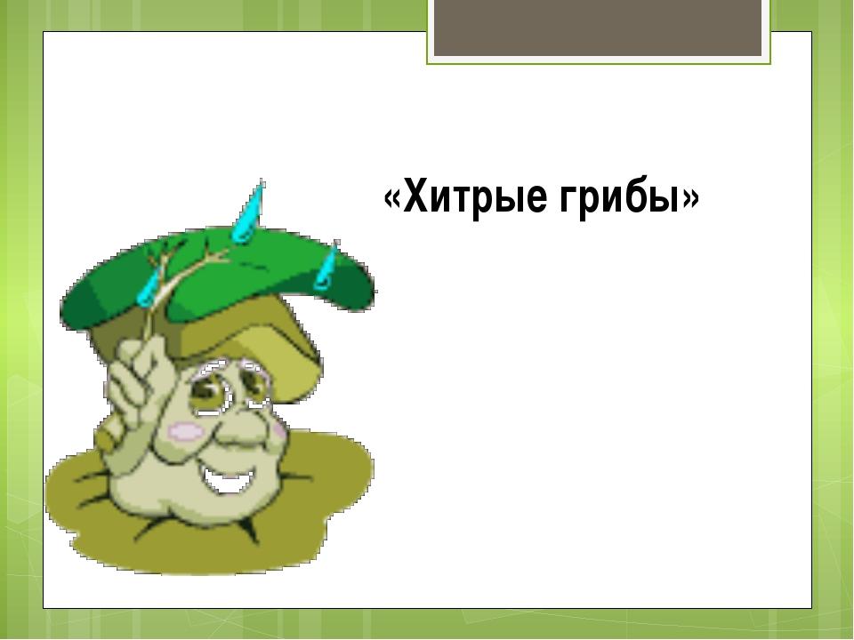 «Хитрые грибы»