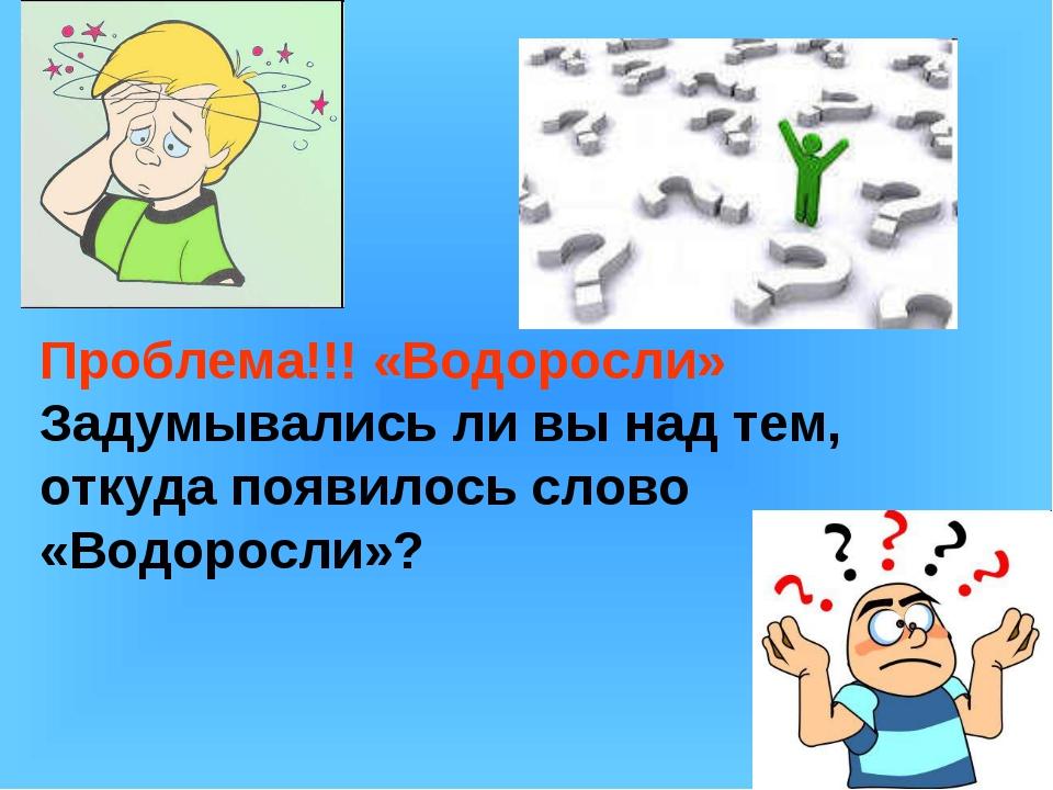 Проблема!!! «Водоросли» Задумывались ли вы над тем, откуда появилось слово «В...
