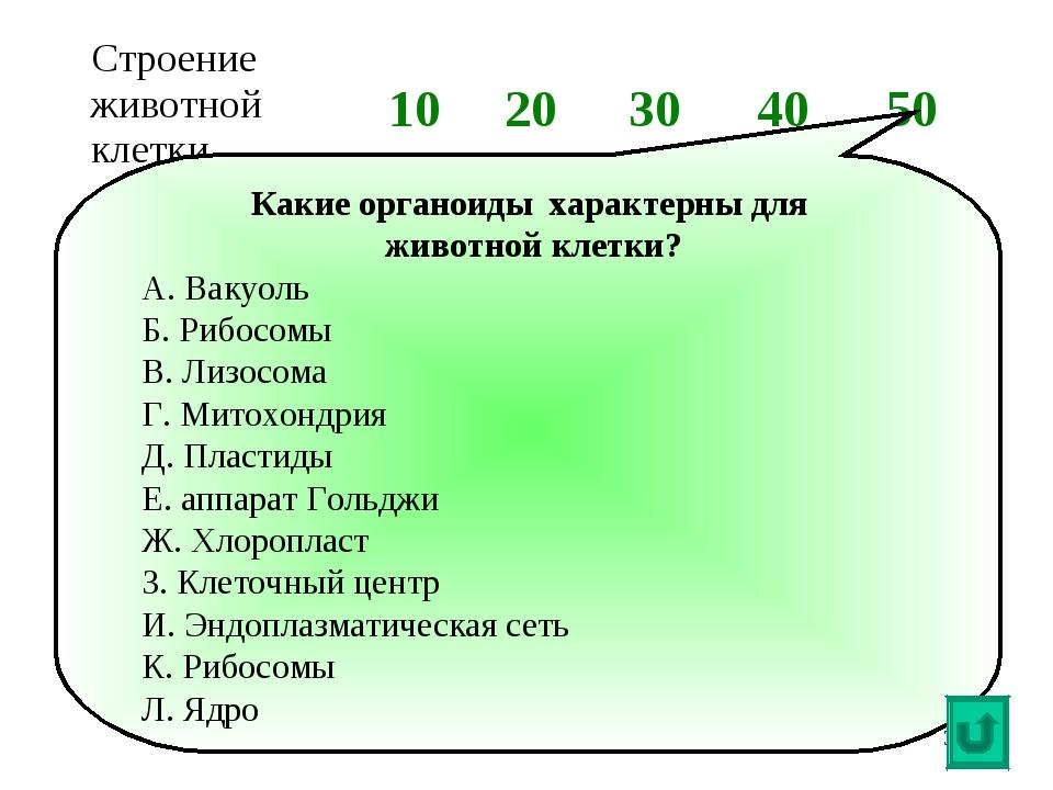 * Какие органоиды характерны для животной клетки? А. Вакуоль Б. Рибосомы В. Л...