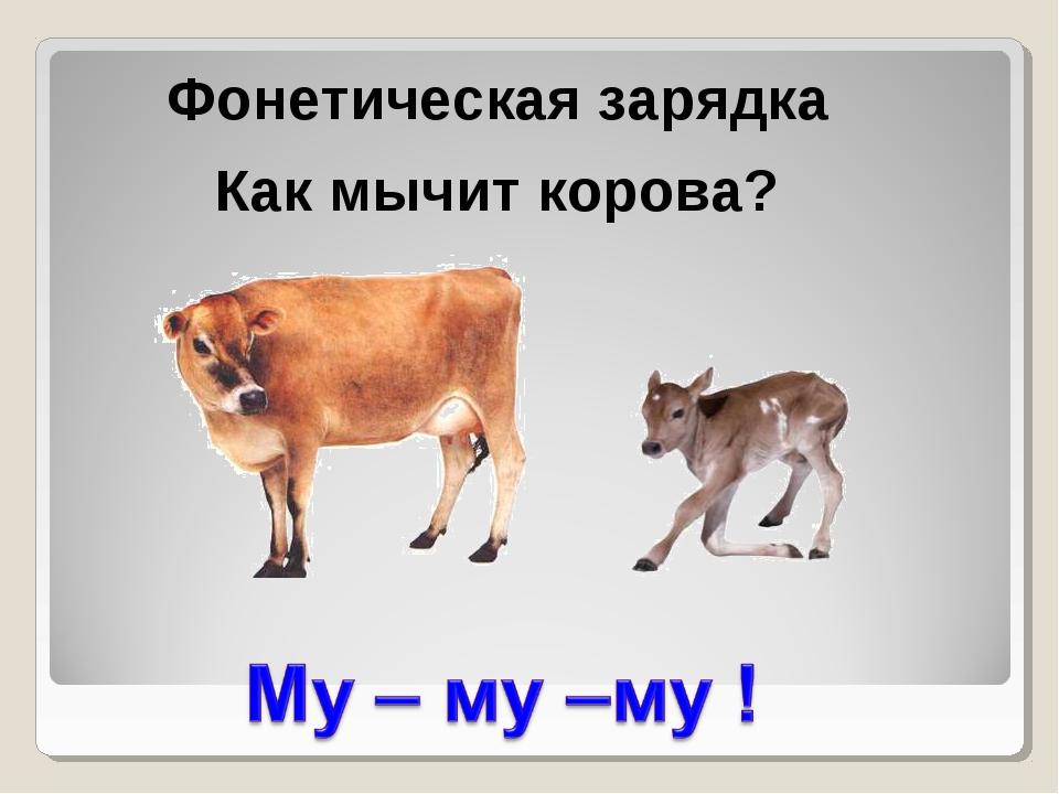 Фонетическая зарядка Как мычит корова?