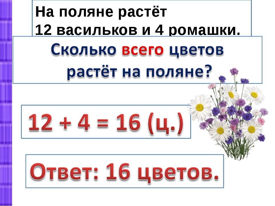 На поляне растёт 12 васильков и 4 ромашки.
