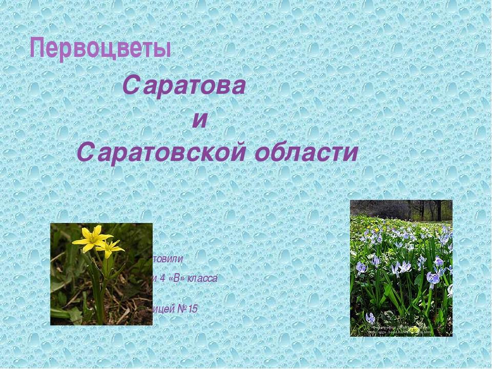 Саратова и Саратовской области подготовили ученики 4 «В» класса МОУ Лицей №1...