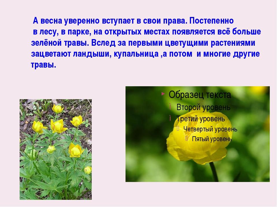 А весна уверенно вступает в свои права. Постепенно в лесу, в парке, на откры...