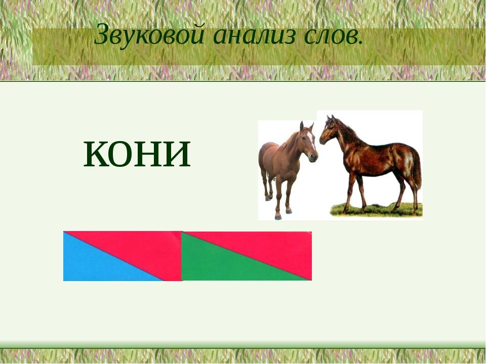 Звуковой анализ слов. кони
