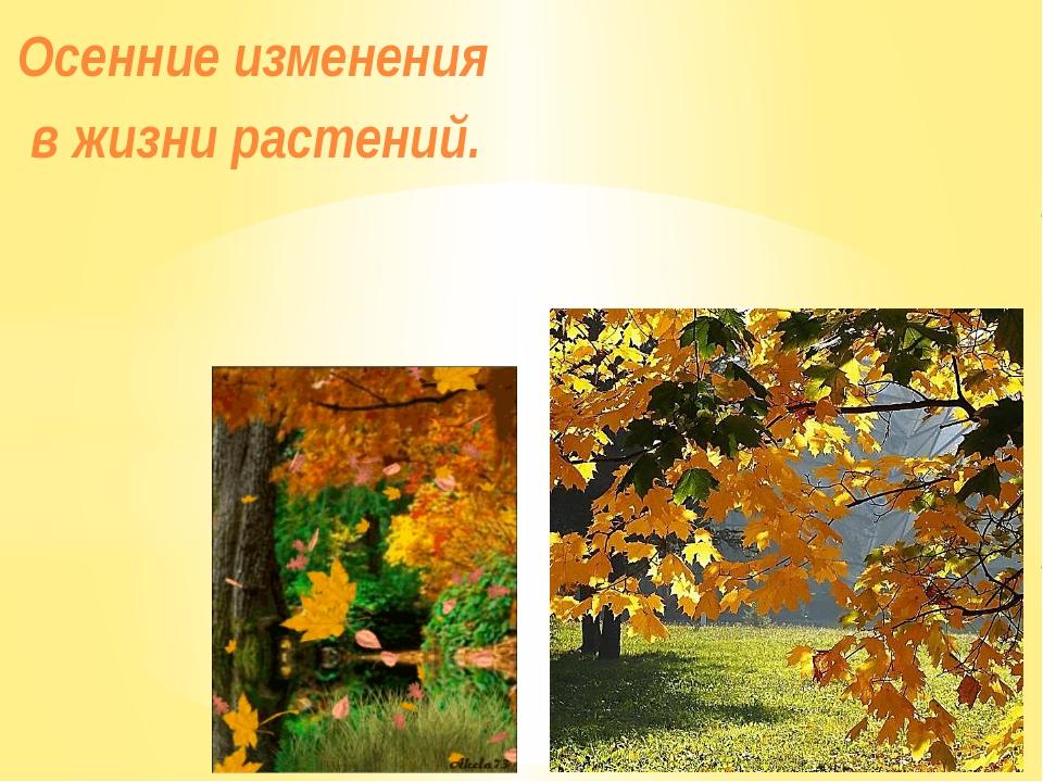 Осенние изменения в жизни растений.