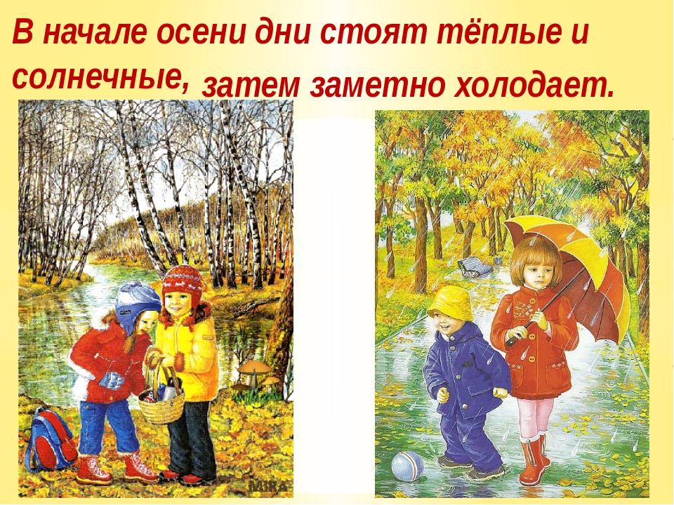 В начале осени дни стоят тёплые и солнечные, затем заметно холодает.